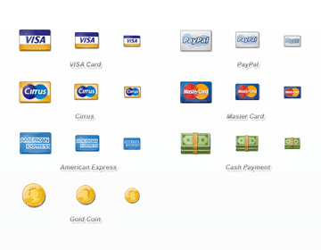 Payment Icon Set